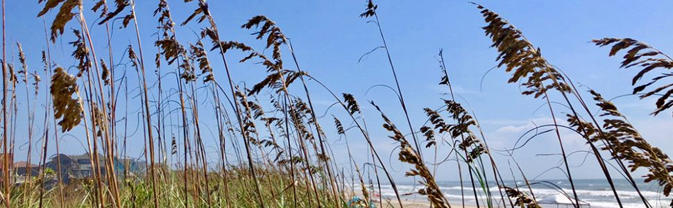 Free Things to do on Hatteras Island