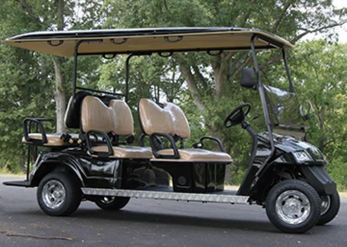 Electic Cart Company